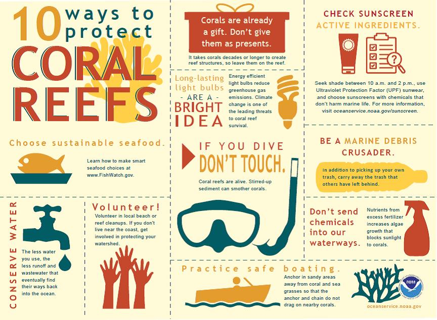 NOAA Ways to Protect Coral Reef Infographic